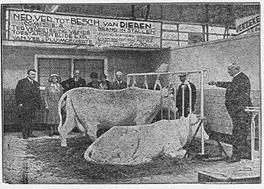 Bovenstaande foto en onderstaande advertentie uit de krant, 1930