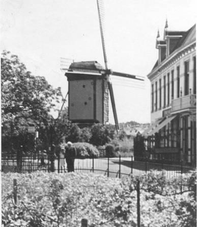 De molen aan de Achterstraat. Rechts De Witte Holevoet