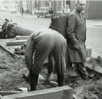 Werner verzet zich tegen het rooien van de bomen. 1969.